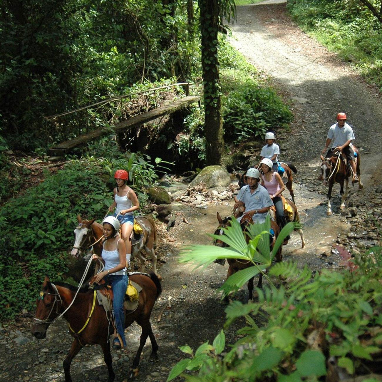 tours-horseback-riding